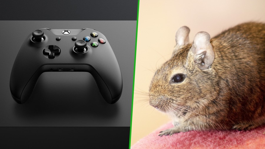 An Xbox One Is Being Used To Keep One Family's Pet Alive