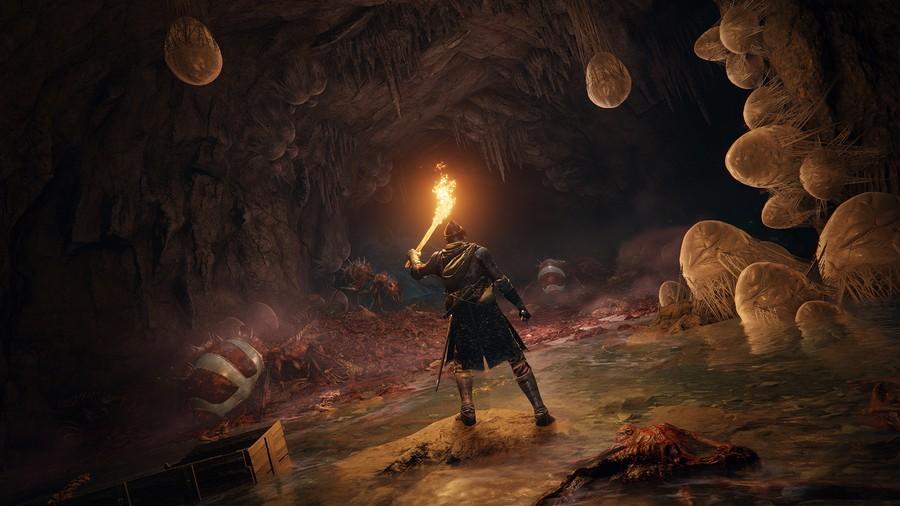 Elden Ring 13