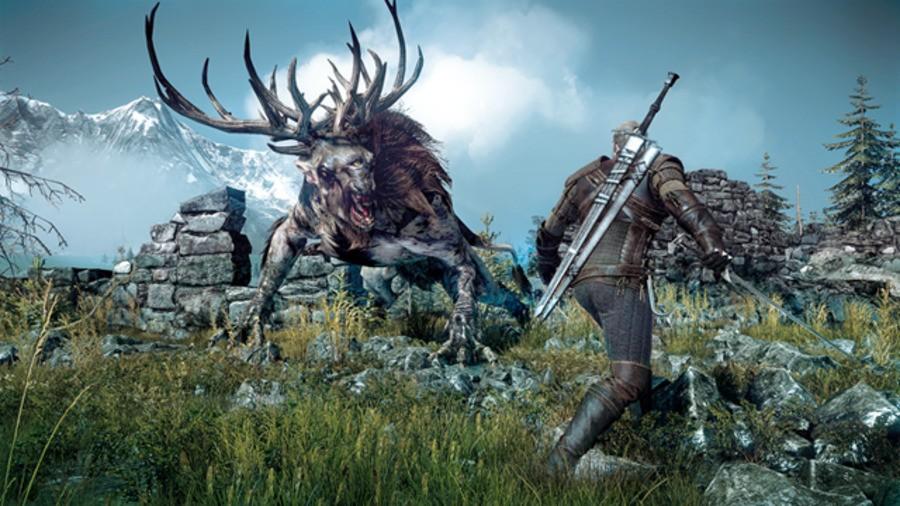 The Witcher 3 Wild Hunt Fiend Fight