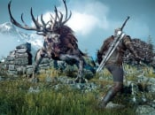 The Witcher 3 Dev Says 'No' to Season Pass, Free DLC for Everyone