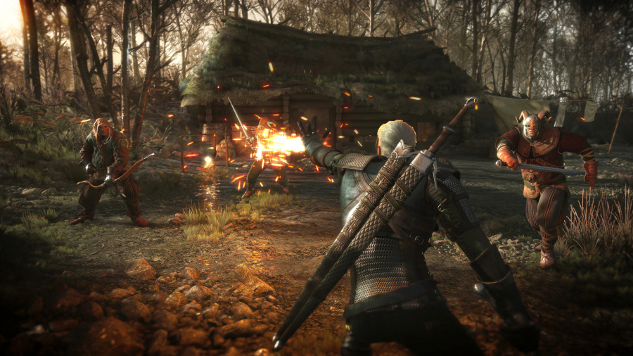 The Witcher 3: Wild Hunt Review - Screenshot 1 of 5
