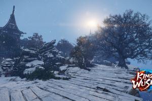 King of Wushu Screenshot