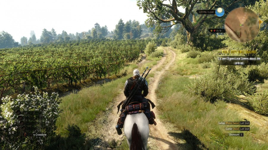 The Witcher 3: Wild Hunt - Hearts of Stone Review - Screenshot 1 of 3